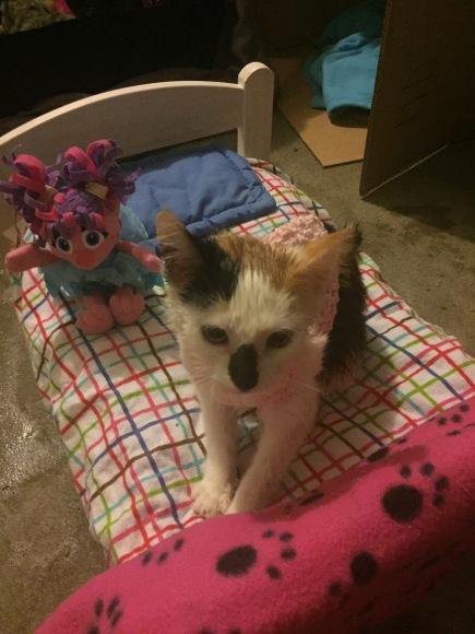 Abby Cadabby and doll